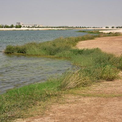 Doha-north-sewage