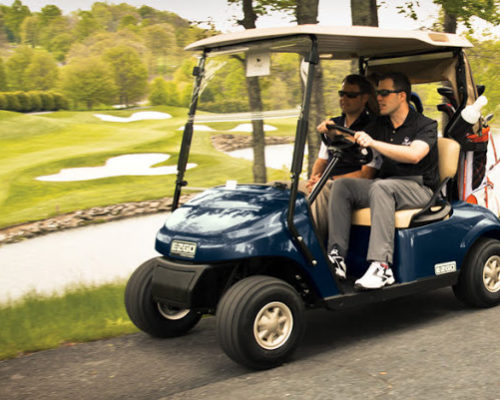 golf car cover pic